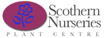 Scothern_Nurseries_Logo